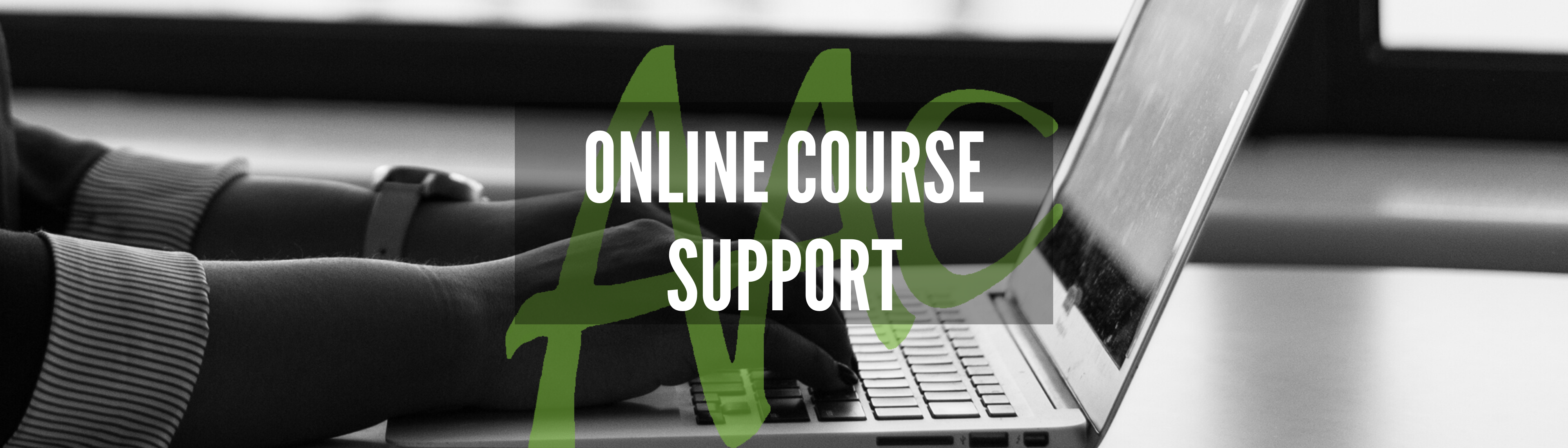 Online course support