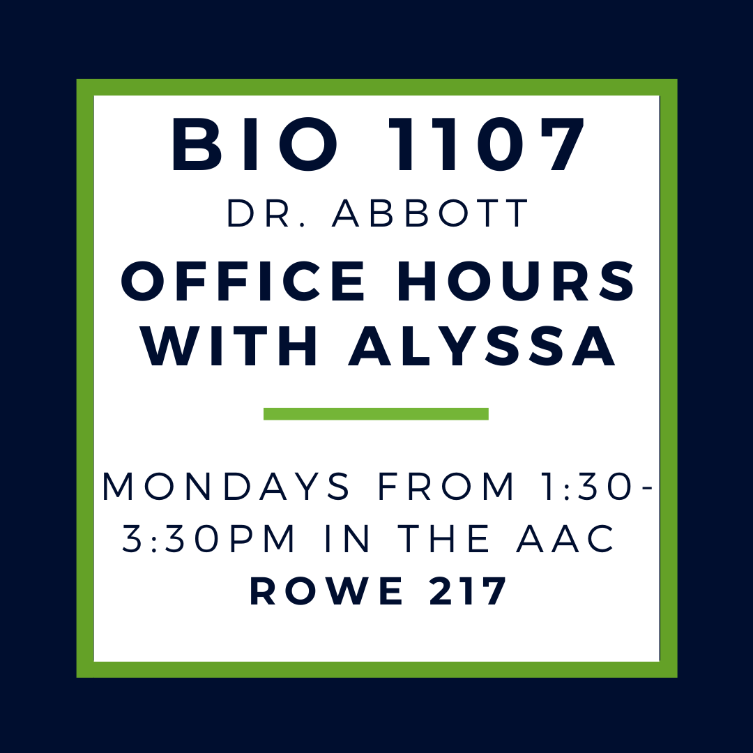 spring 2021 SI and office hours